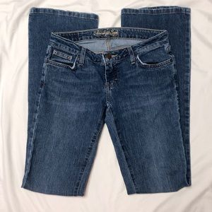 American Eagle Bootcut Stretch Jeans Size 2 Long